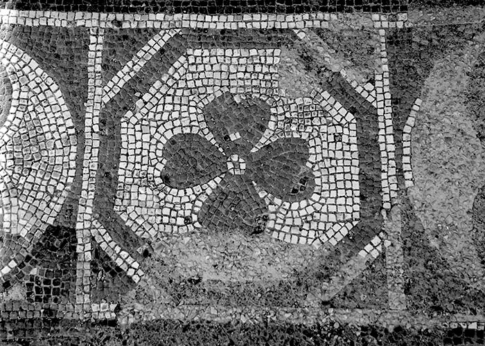 170204-017 Herculaneum.jpg
