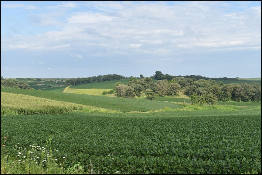 Wisconsin Farm Land